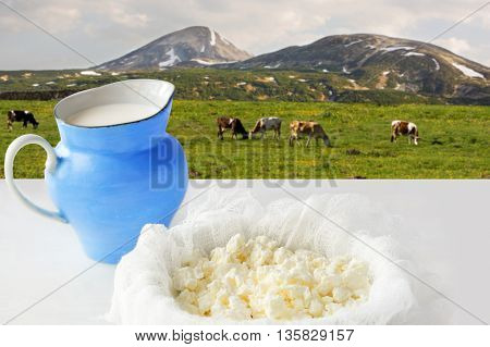 curd cheese and milk overlooking a meadow with grazing cows.