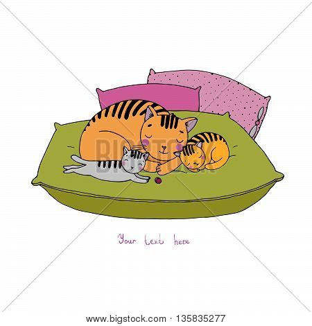 Cute cartoon cats on cushions. Hand drawing isolated objects on white background. Vector illustration.