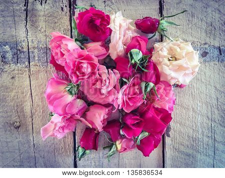 fresh and beautiful roses with wood background
