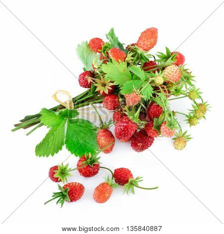 Wild strawberries bundle isolated on white background.