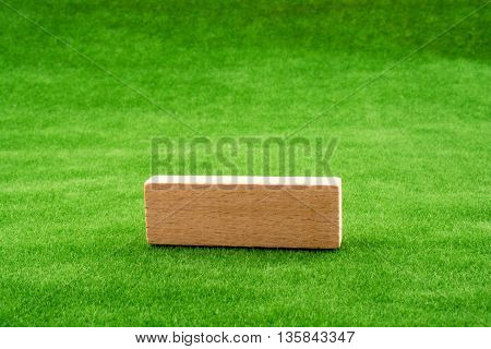 Wooden domino piece placed on green grass