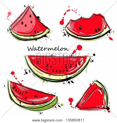 Vector watercolor illustration of watermelon slices. Isolate on white background. Set watermelon.