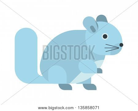Squirrel isolated vector illustration.