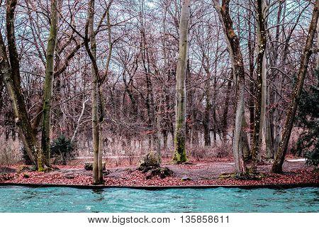 English Garden On Munich, Germany