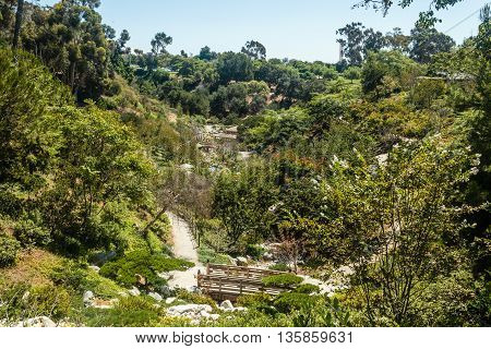 Japanese Garden In San Diego, California