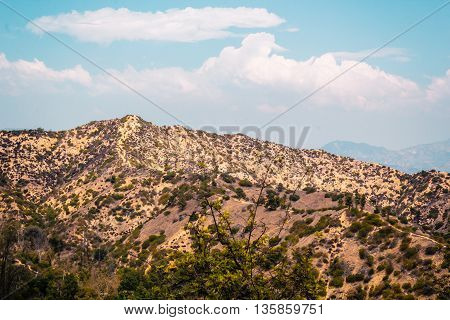 Desertic Mountain In Hollywood, Los Angeles