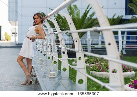 Beautiful Stylish Woman Standing On The Street