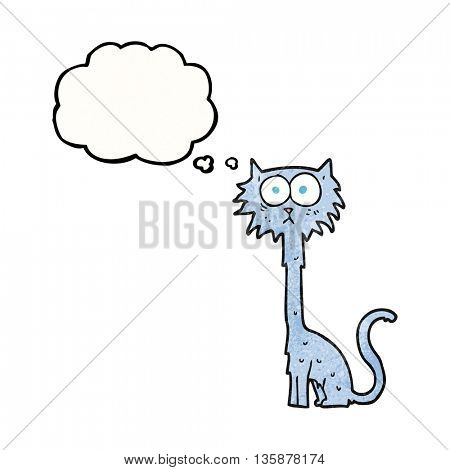 freehand drawn thought bubble textured cartoon cat