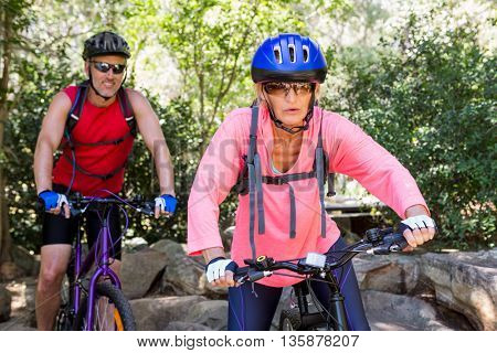 senior couple doing bicycle in a forest