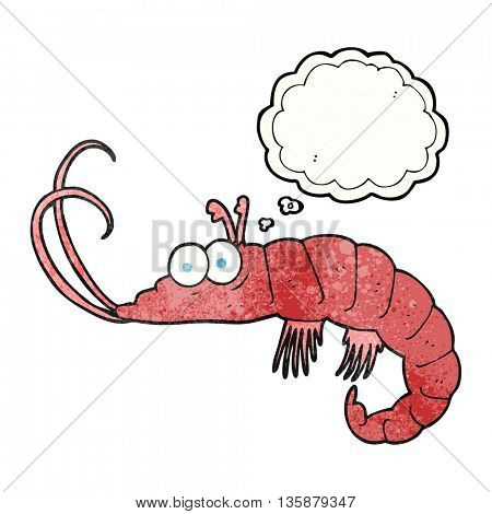 freehand drawn thought bubble textured cartoon shrimp