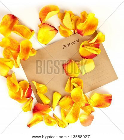 A photo of a brown post card with rose petals around it shot from above on a white background