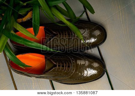 Green lacquered oxford shoes on wooden background near flowerpot. Top view. Close up.