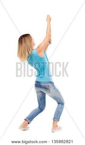 back view of standing girl pulling a rope from the top or cling to something. girl  watching.  Isolated over white background. blonde in a blue shirt and jeans, pulls the top of the rope.