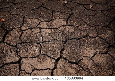 cracked Barren earth or ground Environment drought