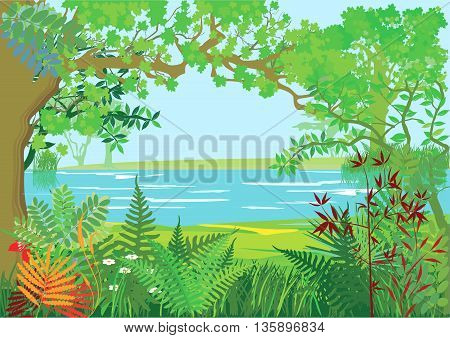 Nature landscape with trees,  lake, river, forest