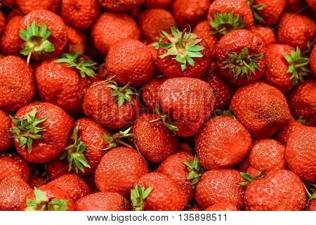 fruit Strawberry Berries Berry Food Abundance love plant