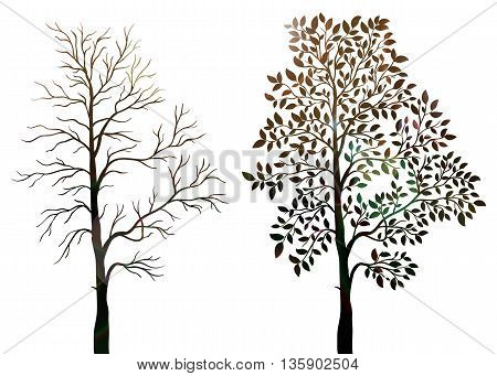 Trees silhouette on a white background vector