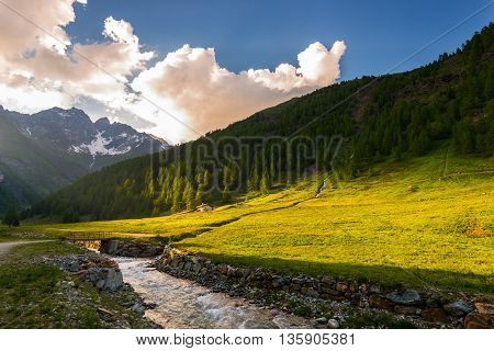 Stream Flowing Through Blooming Alpine Meadow And Lush Green Woodland Set Amid High Altitude Mountai