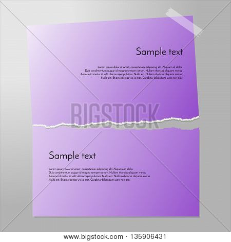 Torn paper vector. Sheet cut in half. Piece of paper on the wall with sticky tape. Purple paper banners.