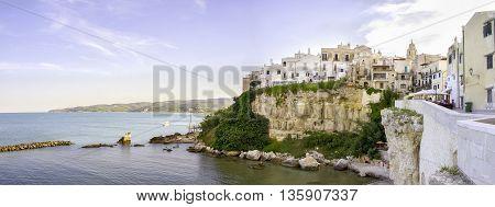 vieste adriatic sea gargano italy panoramic cliff