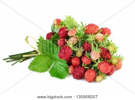 Wild strawberries with leaves on white background.