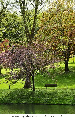 Poissy France - mai 2 2016 : the Meissonier park in spring