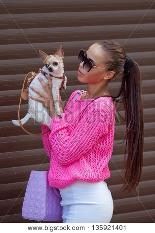 Woman holding chihuahua pet outdoors. Stylish girl playing with chihuahua puppy outdoors. Wearing pink jacket. Summer season.