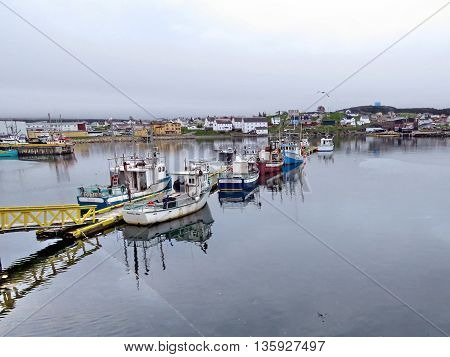 Boats moored at the wharf in Bonavista Newfoundland 14 june 2016 Canada
