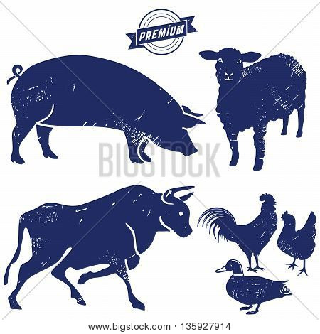 Beef products, meat, livestock,  farm, chicken, butcher,