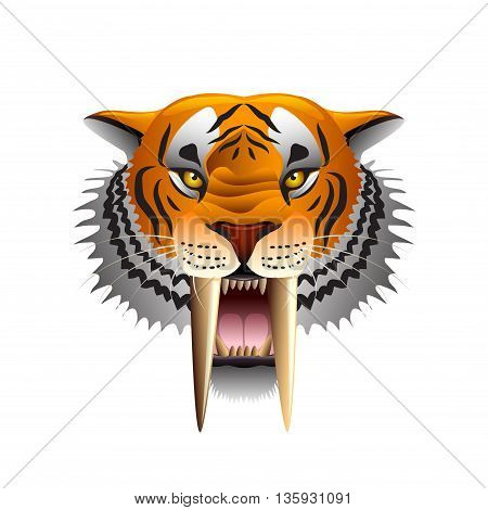 Saber-toothed tiger face isolated on white photo-realistic vector illustration