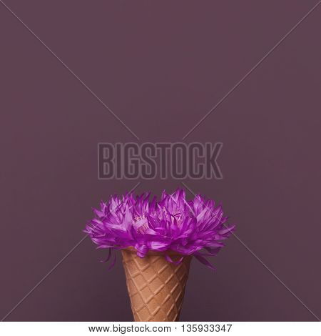 violet dried flower with little petals in waffle ice cream cone on grey background copy space