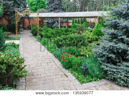 Beautiful landscape design, garden path with stone tiles, evergreen bushes, fir trees, blue spruces and shrubs in sunlight. Modern landscaping. Summer garden or park design.