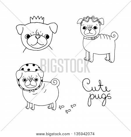 Cute Pugs. Dogs. Hand drawing isolated objects on white background. Vector illustration.