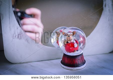 Little snowball with reindeer in front of a mirror also depicting the hand and camera of the photographer