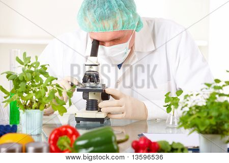 Researcher With Microscope With A Gmo Vegetables In The Laboratory