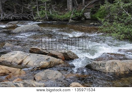 A rushing stream coming down the river in Colorado.