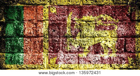 Sri Lanka flag painted on brick wall