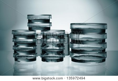 petri dishes in the laboratory. Science concept. Blue colored image