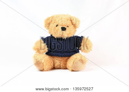 Teddy Bear stuffed toy cute on white background