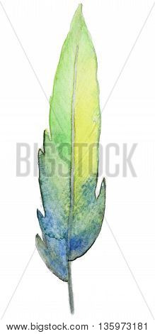 Hand-drawn Watercolor colorful Feather isolated on white background