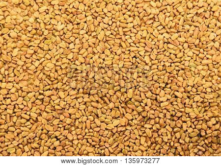 Top view of Fenugreek seeds background texture