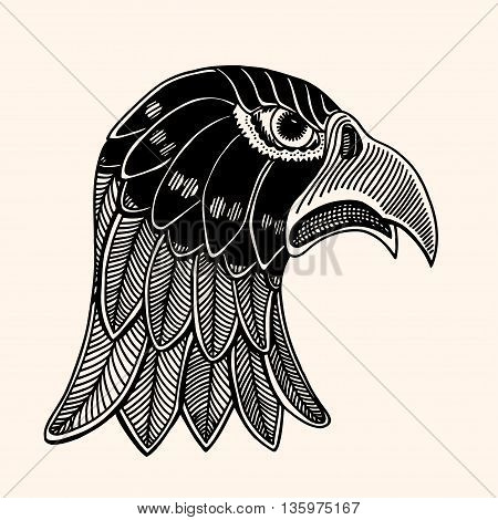 Hand Drawn head of eagle. Detailed illustration. Vector artwork. Black beige color. Sketch for tattoo or indian makhenda design. Can be used for postcard t-shirt bag or poster.