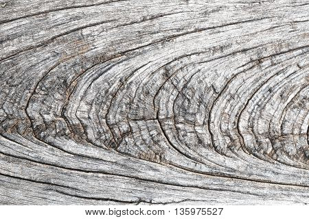 beautiful brown old wood floor background in thailand