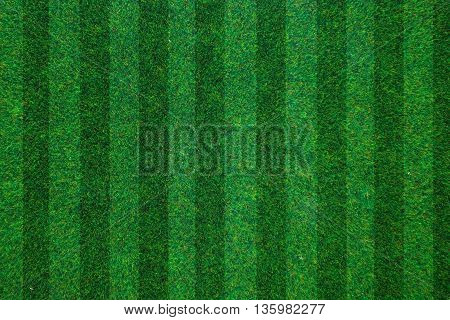 soccerball field green grass background. Top view