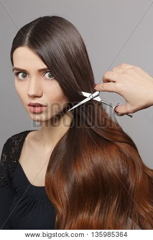 Hairdresser cutting gorgeous hair with hairdressing scissors over grey background. Portrait of frightened woman with modern hairstyle in studio.