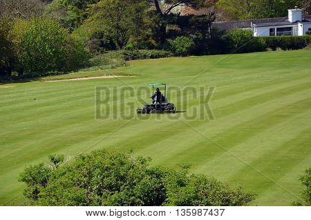 Green Golf Grass Field And Maintenance Vehicle
