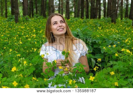 Portrait of beautiful young woman in pine forest among yellow forest flowers