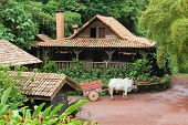 stock photo of oxen  - Traditional Costa Rican home with ox and cart - JPG