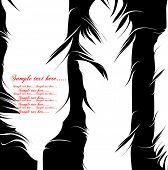 Постер, плакат: Перо набор