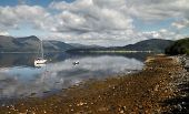 stock photo of bute  - Loch Linnhe is a sea loch that reaches over nine miles inland in Argyle and Bute Scotland - JPG